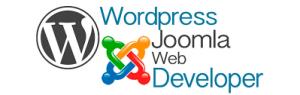cercasi web designer